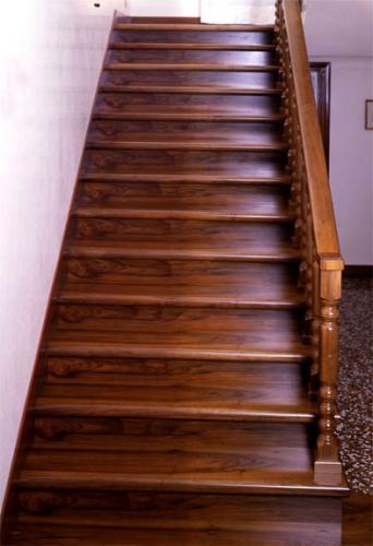 Yanaklı rıhlı merdiven 25